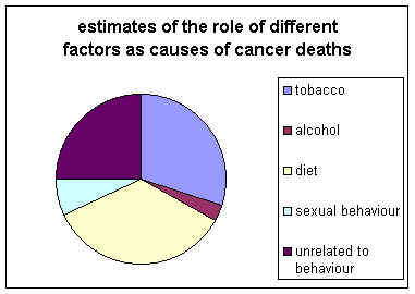 Lung Cancer Stages Of Death