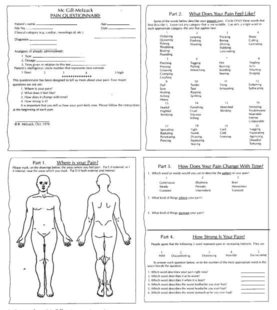body measurement worksheets